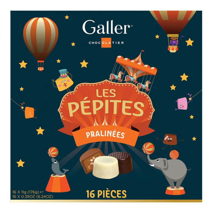"""Šokolaadikommide komplekt Galler """"Les Pépites"""", 16 tk."""